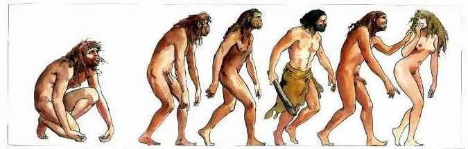 The History Of Humanity Picture