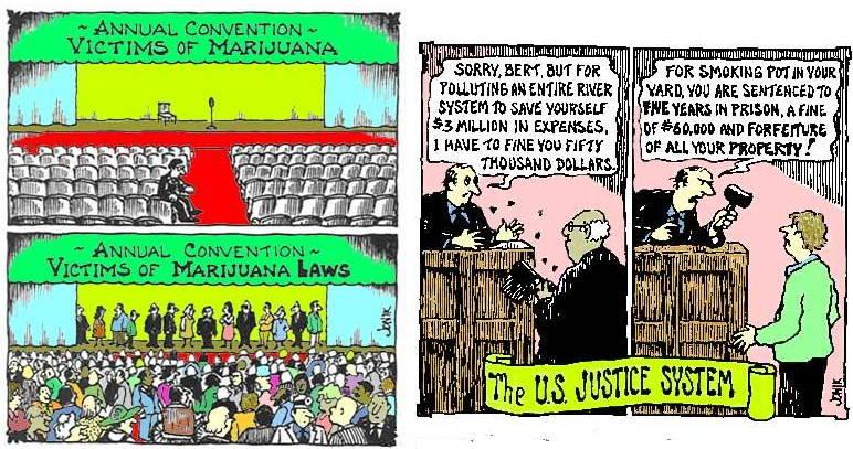 Victims of Marijuana Laws vs Victim of Marijuana comic