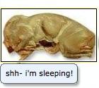Shh... I'm sleeping!