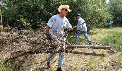 George Bush Clears Brush On Vacation