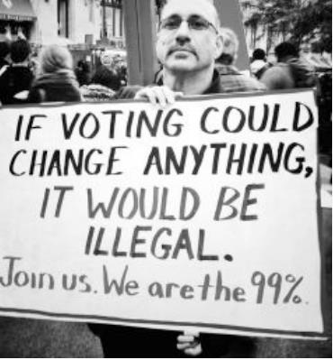 Occupy Wall Street If Voting Changed Things