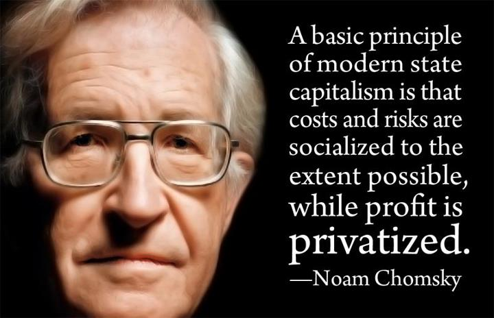 noam-chomsky-privatized-profit-quote
