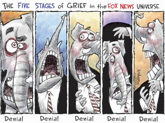 Best Political Cartoons 2012 FOX Grief