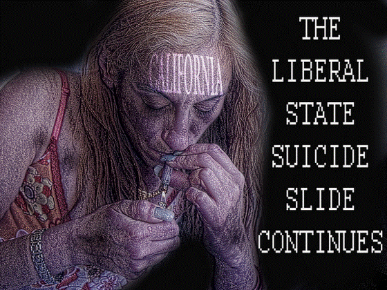Right Wing Conspiracies Liberal Suicide