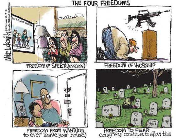 Gun Control Cartoons Freedoms