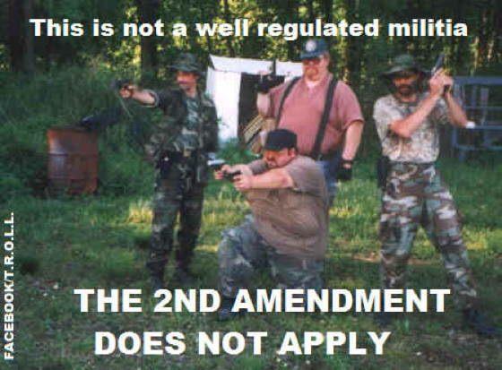 Gun Control Militia Comics