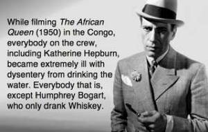 Best Theories Humphrey Bogart