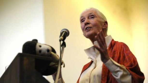 Jane Goodall Climate Change