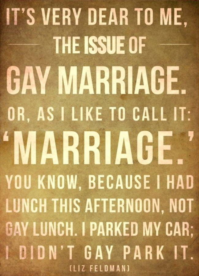 Gay Marriage Liz Feldman