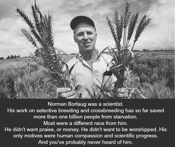 norman borlaug Meet Norman Borlaug, A Hero Youve Never Heard Of