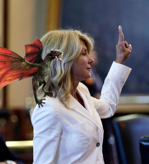 Wendy Davis Dragons