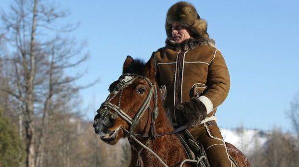 Dictator Fashions Putin Horse