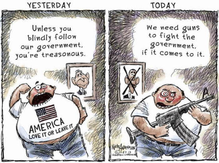 2013 Political Cartoons Patriotism