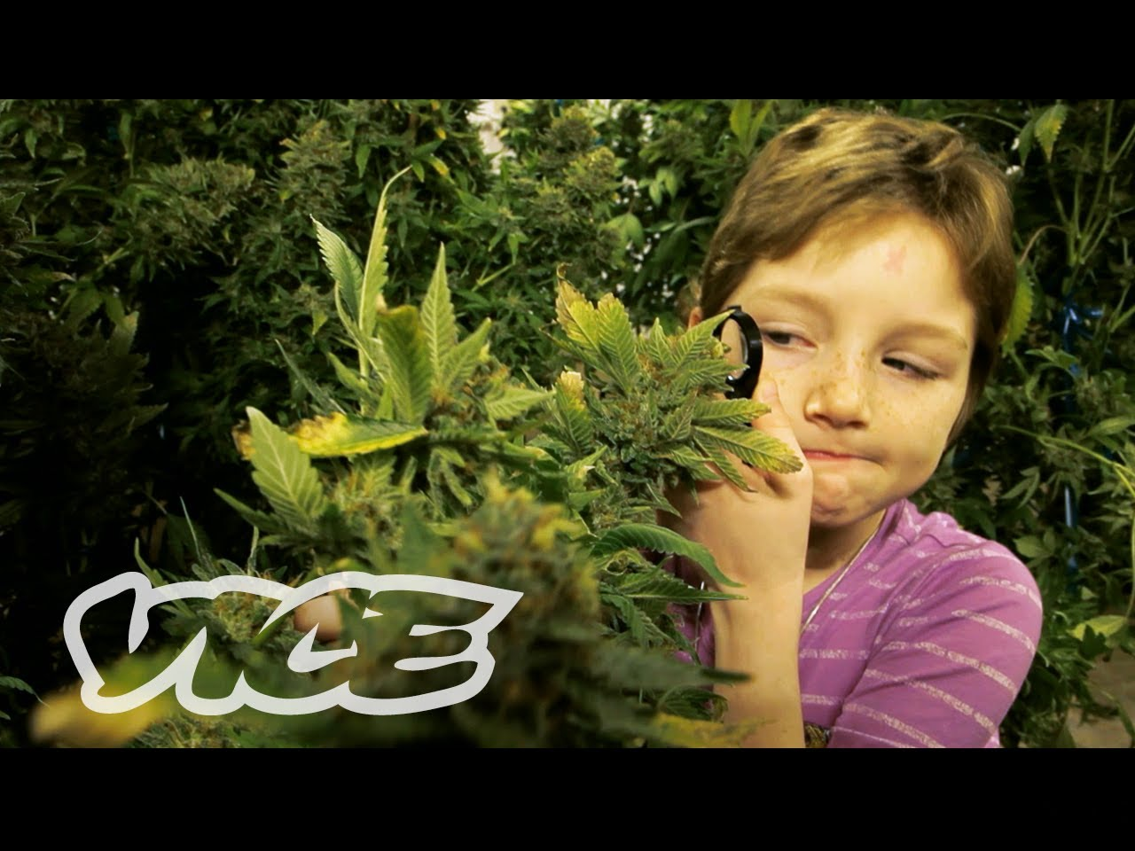 children should be taught the effects of smoking Learn with play at home wrote this awesome list post of things to teach an older  child (4+)  it can be hard to know what information will save your child in the  case of an  while house fires can occur at any time of day, the risk at night can  be  even reports that children might not wake up to the sound of the smoke  detector.