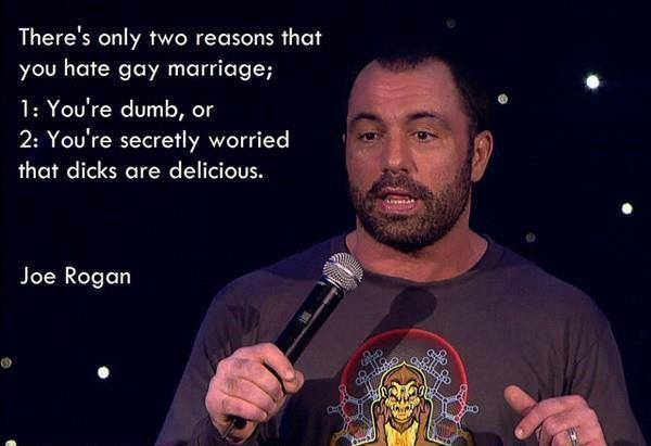 Joe Rogan Gay Marriage