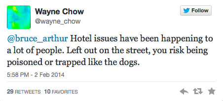 Sochi Tweets Dogs