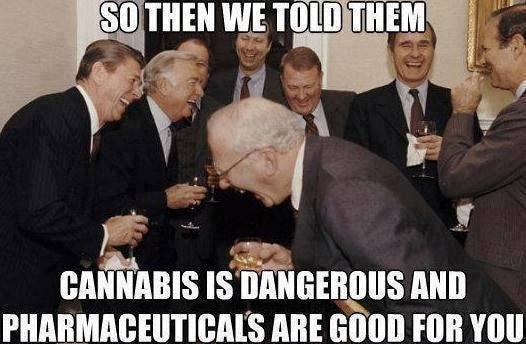 weed-memes-cannabis-dangerous